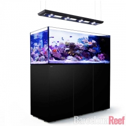 Acuario Red Sea Reefer Península 650