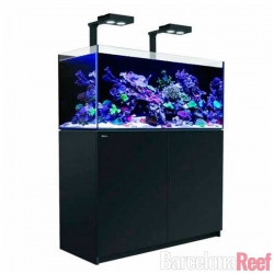 Acuario completo Red Sea Reefer XL 425 | Barcelona Reef