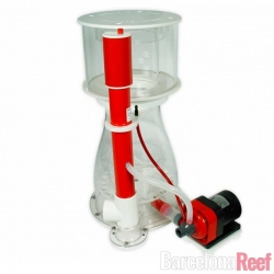 Skimmer Bubble King® Double Cone 250 + RD3 Speedy Royal Exclusiv para acuario marino | Barcelona Reef