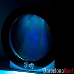 Medusario JellyFlap 7 litros | Barcelona Reef