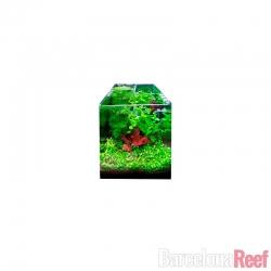 Comprar Acuario Completo Cubic 6236 Blau Aquaristic online en Barcelona Reef