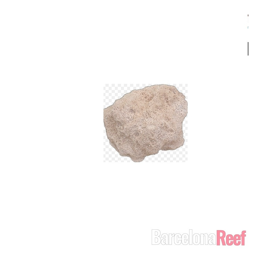 Filtro Rock (Medium) de MarinePure