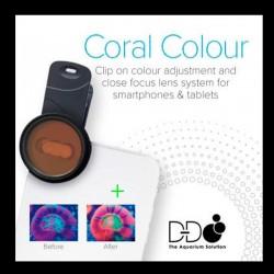 Clip fotográfico D-D Coral Colors | Barcelona Reef