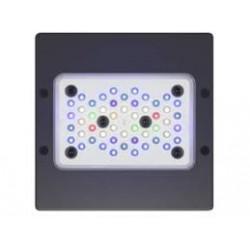 Radion XR15w G4 Pro LED Light para acuario marino | Barcelona Reef