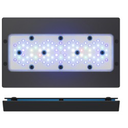 Pantalla Radion XR30G5 PRO/BLUE LED | Barcelona Reef