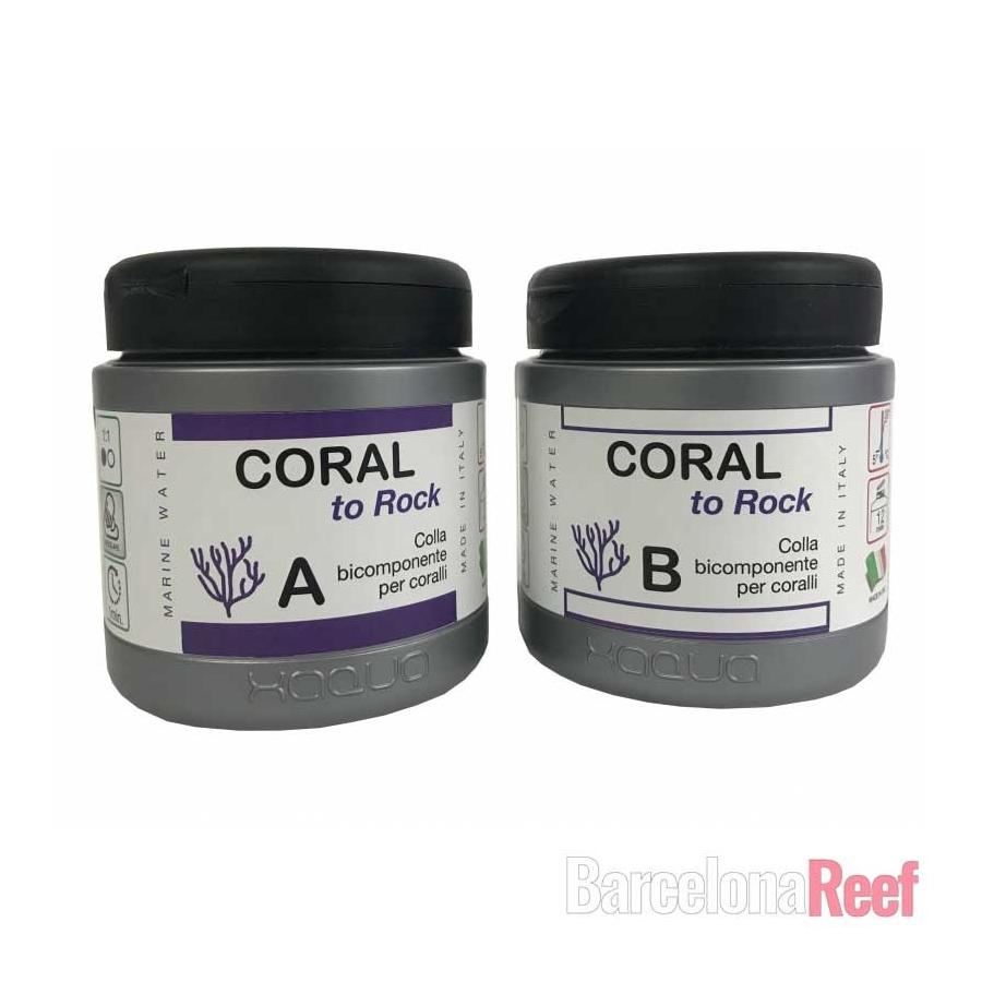 Xaqua Coral to Rock