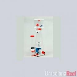 Comprar CURVE A-5 online en Barcelona Reef