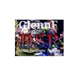 DSR Reefeng