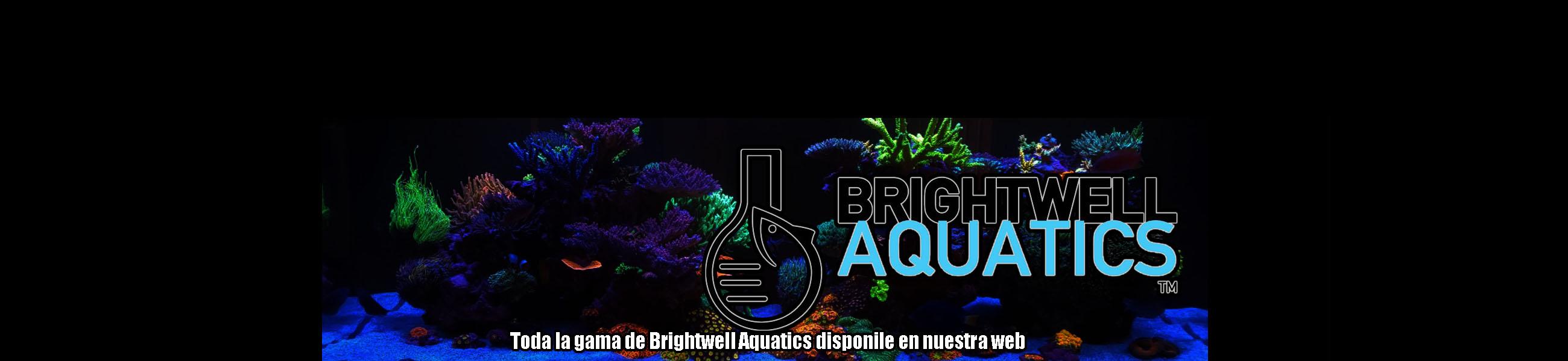BarcelonaReef | Tienda de acuarios marinos en Barcelona